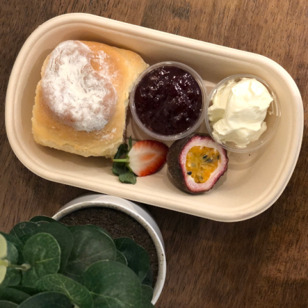 Freshly baked scone with jam & cream (individually packed )